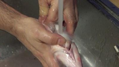 Orata al sale profumata al rosmarino