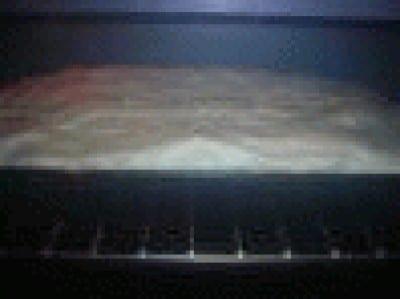Rotolo di meringa con mascarpone e fragole