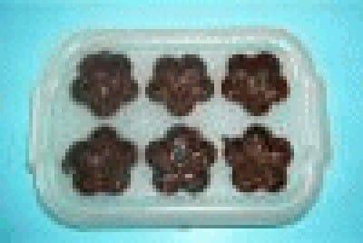 Cioccolatini alle fragole