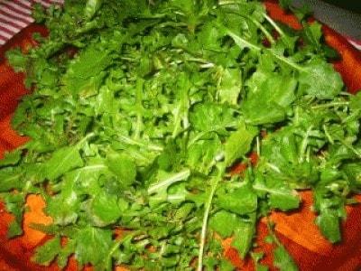 Caciucco vegetale