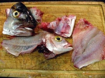 Il fumetto di pesce