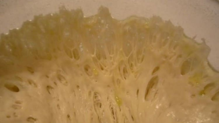 Pasta madre (lievito naturale)