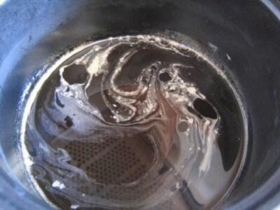 Semifreddo allo sciroppo d'acero e noci pralinate