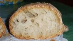 Pane senza impasto di cirus