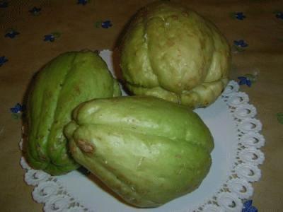 Zucchine spinose sottolio