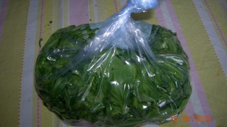 Basilico congelato