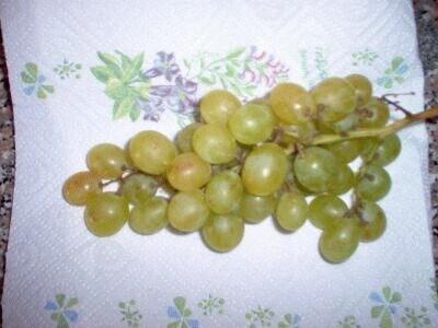 Aringhe con l'uva