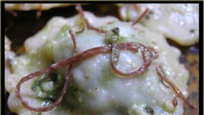 Pansoti integrali al burro e salvia e sfilacci
