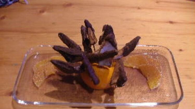 Crostini di gorgonzola e cioccolato