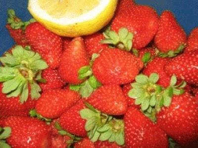 Granita di fragole con panna di Katjma