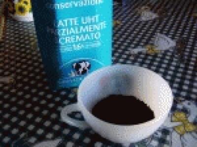 Semifreddo e gelato al caffè