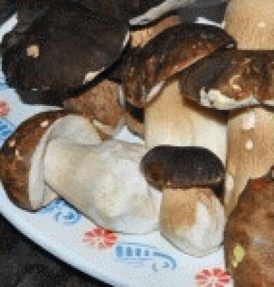 Fregola sarda con funghi porcini