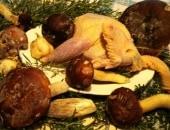 Fagiano arrosto con funghi porcini