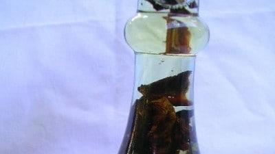 Olio aromatizzato ai funghi porcini
