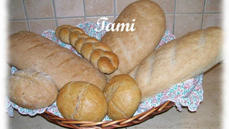 Pane e panini integrali