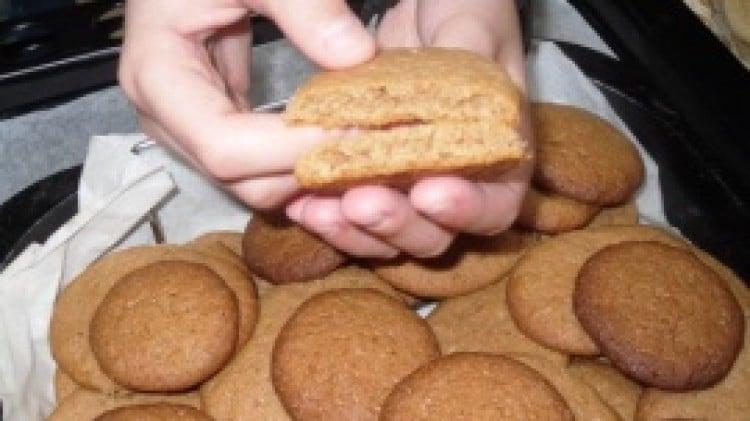 Biscotti al miele e cioccolato