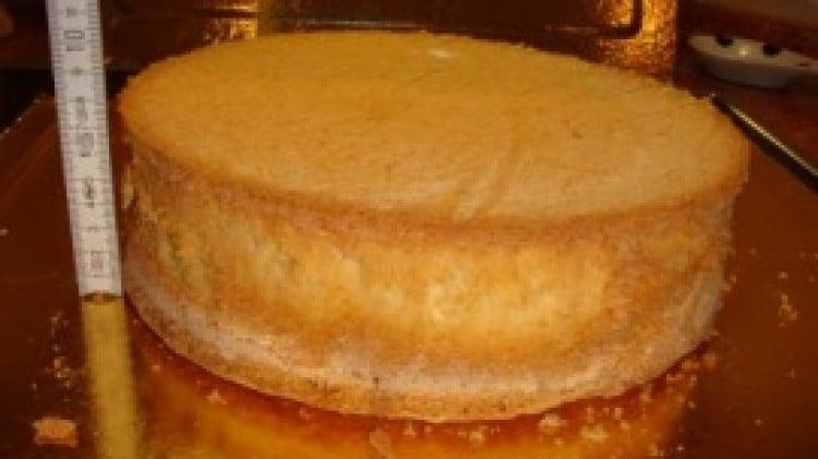 Pan di spagna con preparato per budino